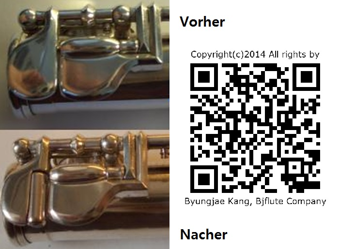 Dis_roller_Umbau_Bjflutecompany_Meisterkang_DE.jpg